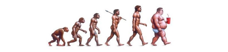 evolução homem